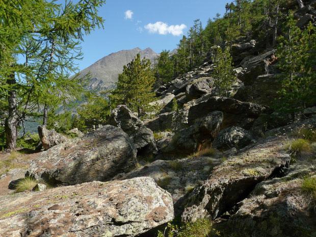 Teilansicht des Wanderweges zum Mattmark-Stausse hinauf