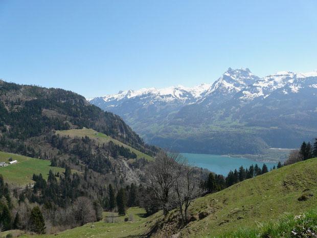 Blick von der Alp Matt auf den Walensee und den Mürtschenstock