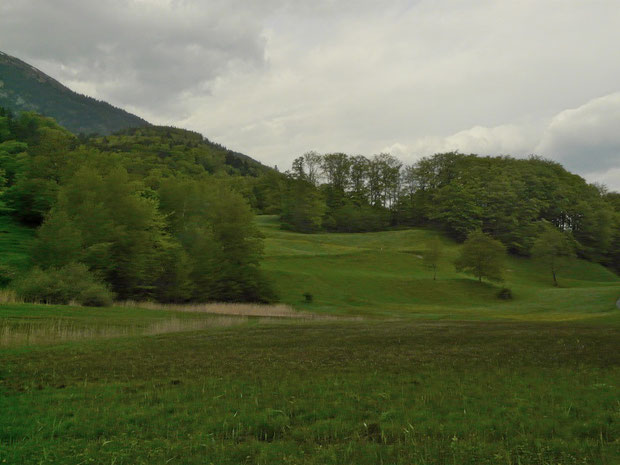 Sabrens - Flachmoorgebiet von Nationaler Bedeutung.