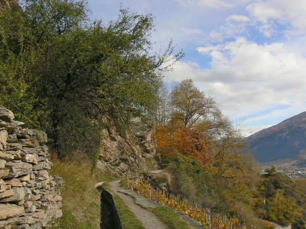 Suona am Südhang des Mont d'Orge