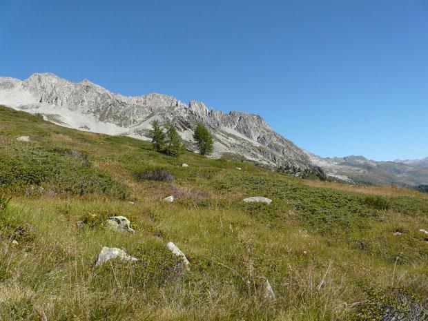 Alpe della Cassina Baggio