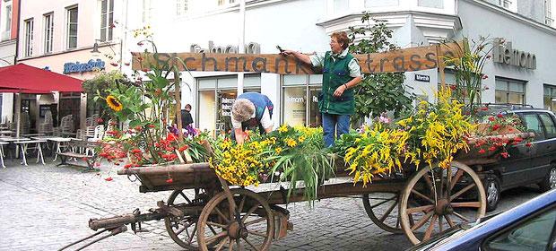 Veranstaltung u. Aktivitäten der Ortsvereine  Kreisverband für Gartenbau und Landespflege Rosenheim e.V.