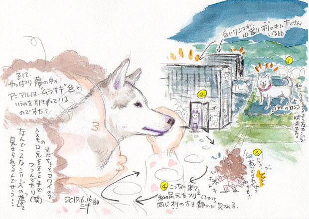 夢スケッチ:紫の色味がかったハスキー犬