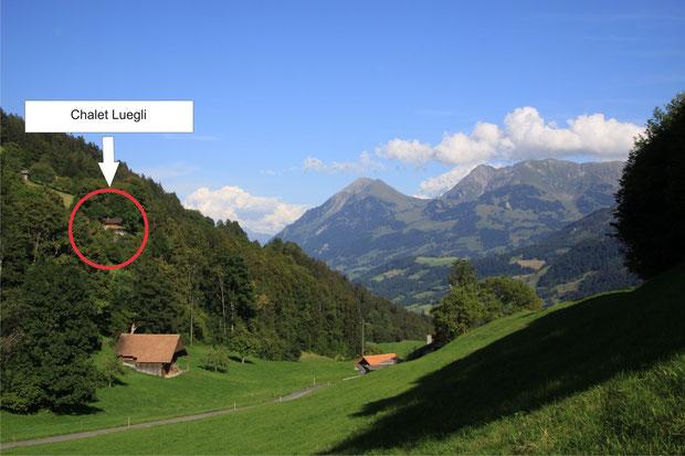 Abbildung 1: Unverbaute Traumsicht aufs Simmental und umliegende Bergketten