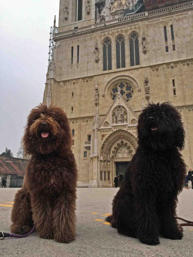 Bluna und Jacko in der Altstadt.