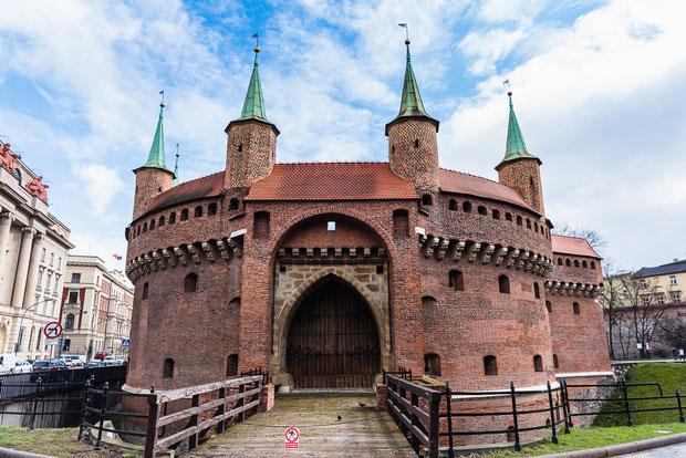 Visitar Colina de Wawel y Ciudad Vieja en privado y en español