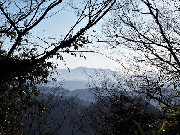 部子山・・・雪でキラキラ輝いていてほしかった