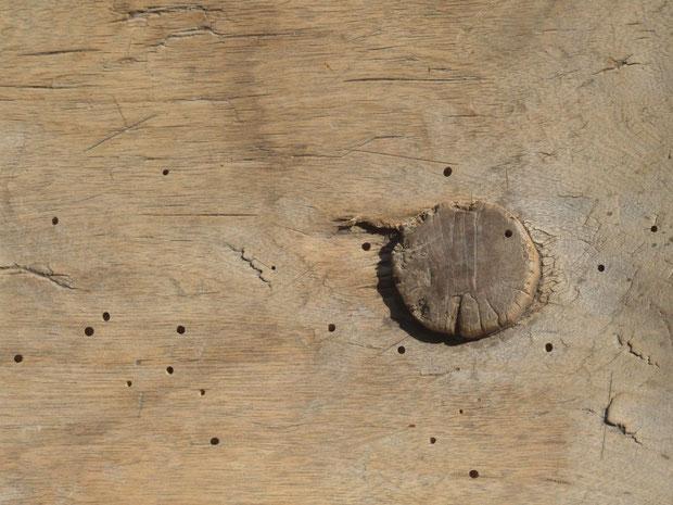 fragment drewnianego stołka fot. Anna Gieracka