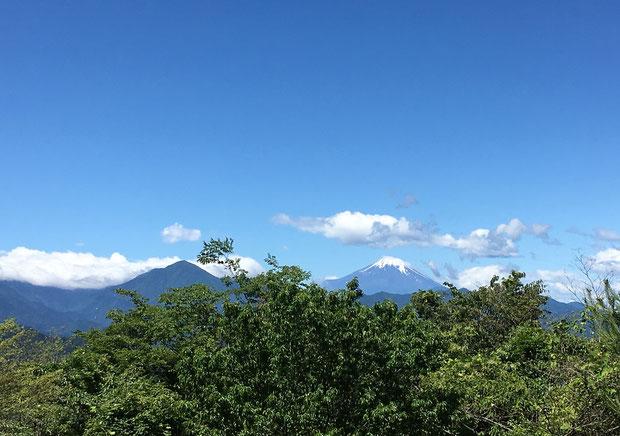 オサモミ整体院 富士山