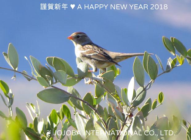 ❦ 謹賀新年  A HAPPY NEW YEAR 2018 ♪