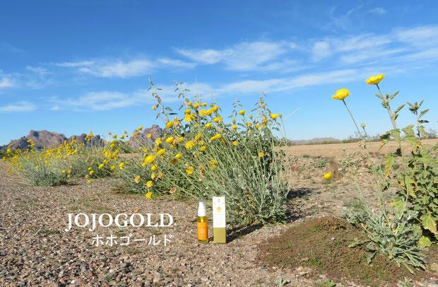 ♔ JOJOGOLD 砂漠の美宝 天然の美の雫 ホホゴールド
