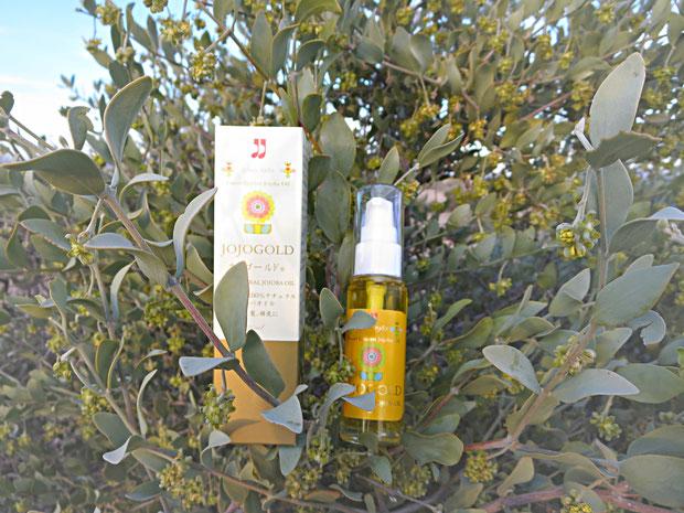 """❦ ARIZONA JOJOGOLD """"Mystic dew"""" - a golden Oasis for your skin. ネイティブホホバが太古より自生する地・原産国アリゾナ州の原種ホホバ 直営農園栽培より絞りたて高純度の新鮮ホホバオイルをお届け致します❤"""