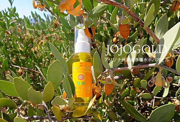 ❦ JOJOGOLD アリゾナ州原産原種ホホバオイル ハクアハラバレー産 ホホゴールド 30ml入