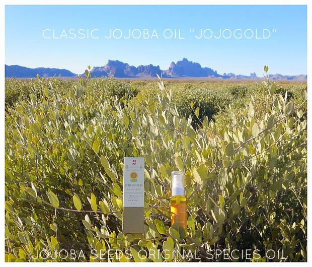 """❦ CLASSIC JOJOBA OIL """"JOJOGOLD"""" アリゾナ州原産原種ホホバ 天然の潤いを。 ホホゴールドの優れた浸透力によってお肌・髪の内側に作用します。ツヤ、ハリのある 素肌 若返り 美しさへー"""