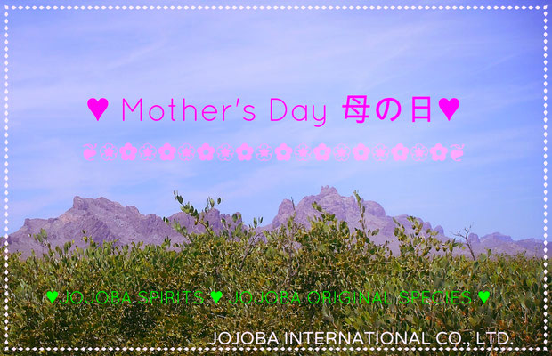 ❦ JOJOBA ♥ Spiritual Beauty ♥ Mother's Day 母の日 ♥