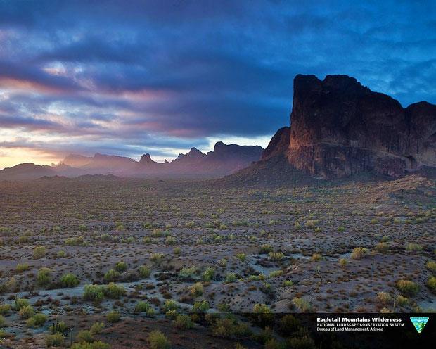 ♔ オブライエンズご夫妻が政府に寄付されたアリゾナ州ハクアハラヴァレーイーグルテールマウンテン環境保護区の山の麓で私達の神秘の植物 原種ホホバは生長しています。太古よりの風景・環境がそのまま大切に保護されています。【お写真: National Conservation Lands by U.S. DEPARTMENT OF THE INTERIOR】