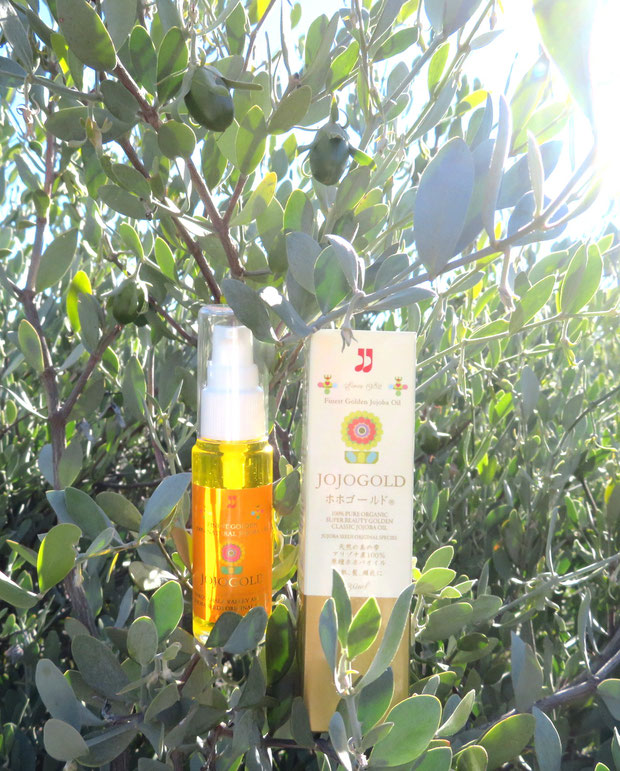 "♔ CLASSIC JOJOBA OIL JOJOGOLD ""Mystic dew"" - a golden Oasis for your skin."