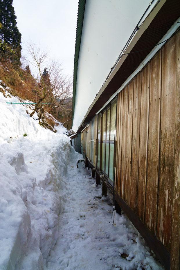 ようやく地面が見え、除雪完了です!