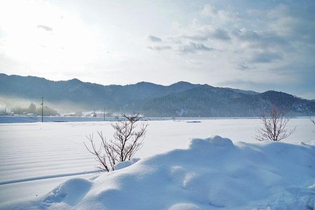 1月2日上林