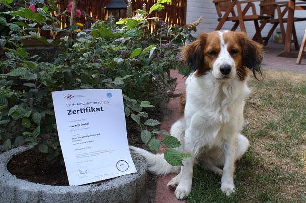 Bethje mit ihrem Hundeführerschein