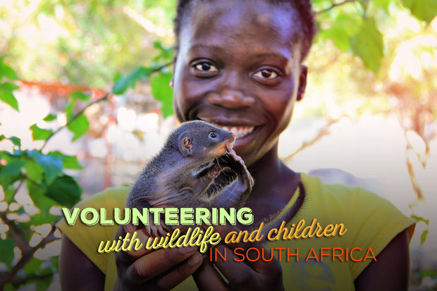 Volunteering with Wildlife and Children in South Africa - My Enriching Experience | via @Just1WayTicket