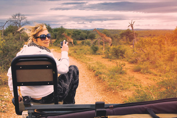 Game Drives and Wildlife Safari | Where to find the big 5 - The Ultimate Guide to Wildlife Safari in South Africa | via @Just1WayTicket | Photo © Sabrina Iovino