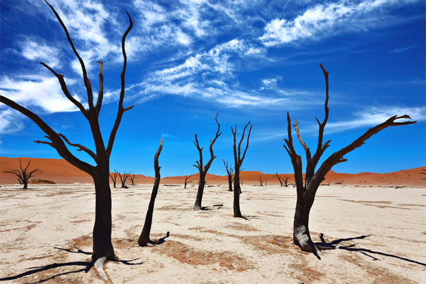 Deadvlei and Sossusvlei | Travel Guide To Namibia - Things To Do And Places To Stay | via @Just1WayTicket