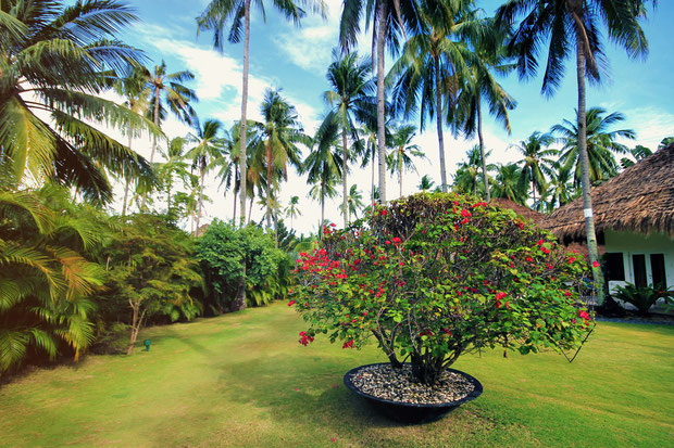 Beautiful manicured gardens at Atmosphere Resort, Dauin, Philippines © Sabrina Iovino | JustOneWayTicket.com