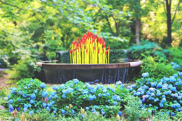 Botanical Garden | 8 Fun Things to do in Atlanta | Travel City Guide | via @Just1WayTicket