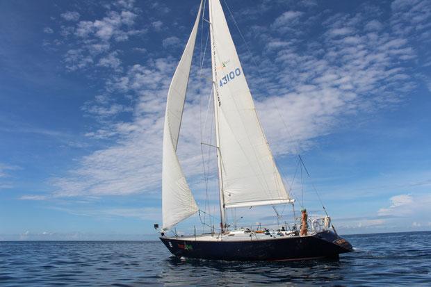 Race yacht papagayo