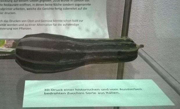 """Die historische Zucchini-Sorte """"Lungo Fiorentino"""" wurde als 3D-Druck im sogenannten Pulverdruckverfahren hergestellt."""