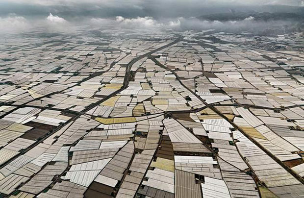 Die südspanische Provinz Almeria, aus der die meisten Supermarkttomaten kommen, ist großflächig von Folien- und Gewächshäusern bedeckt.