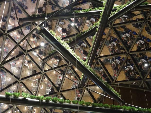 """Das Motto der Expo 2015 in Mailand war: """"Den Planet ernähren, Energie für das Leben"""""""