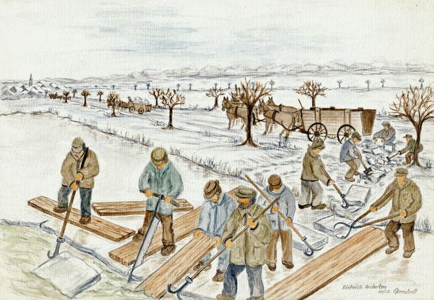 Für die Eisgewinnung wurde 1850 nördlich von Anderten ein Eisteich angelegt. Das Eis wurde dann mit Kutschen zu den Eiskellern transportiert.