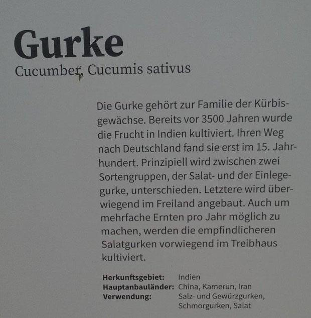 Quelle: Weltacker 2000 auf der IGA 2017 in Berlin