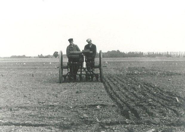 Feldarbeit in den 40er Jahren