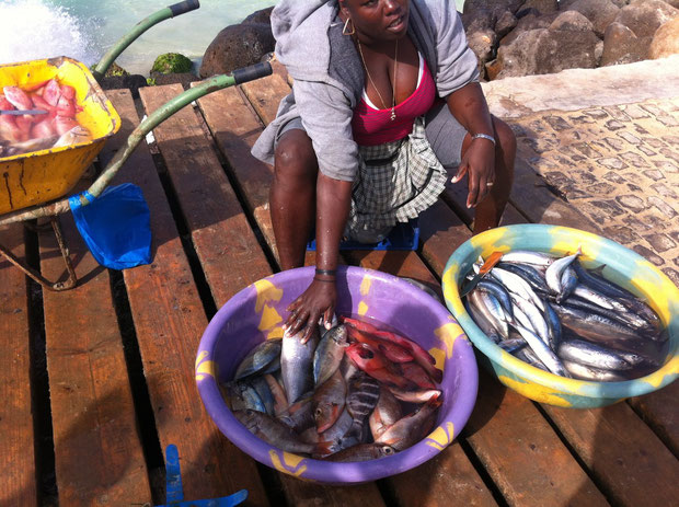 Das Hauptnahrungsmittel: frischer Fisch