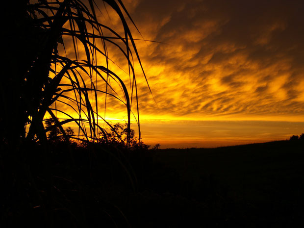 Abendstimmung, Sonnenuntergang am Lübbesee in Templin, Uckermark, Schorfheide, Land Brandenburg
