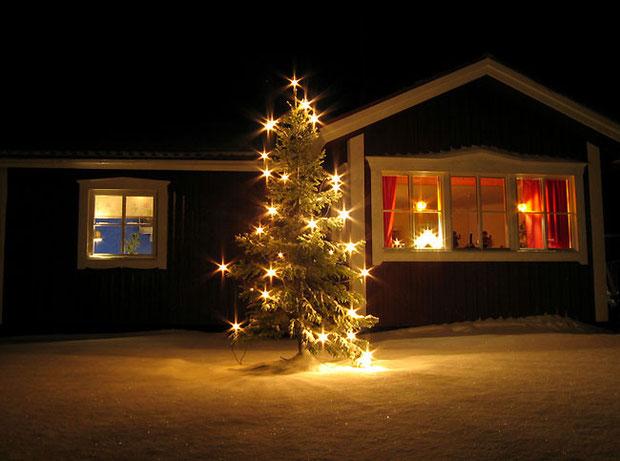 Новогодняя елка перед домом