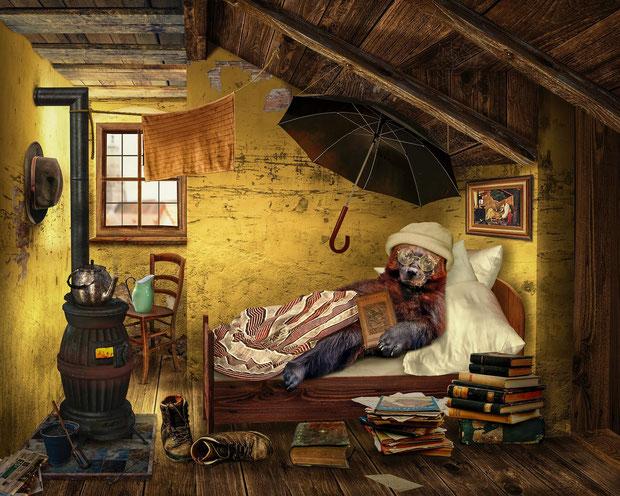 Ein Bär liegt mit Buch in der Pfote in einem Bett. Er trägt Brille und Mütze. Rundherum Bücher, ein Ofen, Regenschirm, Hut