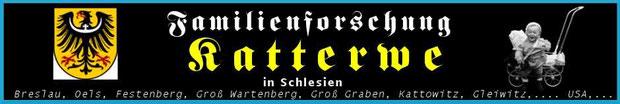 Breslau, Groß Graben, Festenberg, Kattowitz, Goschütz, Oels, Gleiwitz,... USA...GB,...