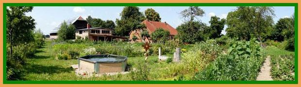 Garten mit Wasserbecken