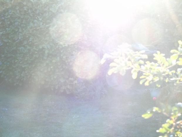 "©www.lichtwesenfotografie.com ""Energiekugeln"""