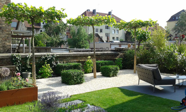 Privater Garten 2014