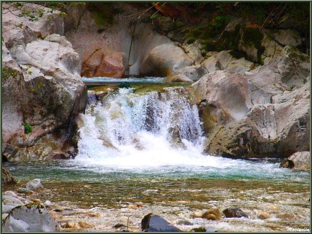 Et coule une petite cascade dans le Gave d'Ossau entre les Eaux-Chaudes et Gabas, Vallée d'Ossau (64)