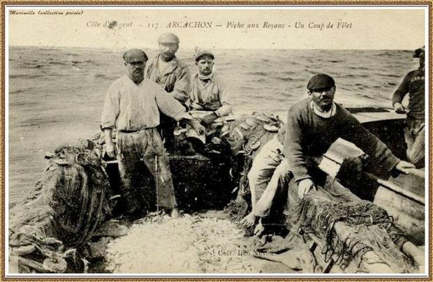 Pêcheurs de sardines (ou Royans) en mer, Bassin d'Arcachon (33)