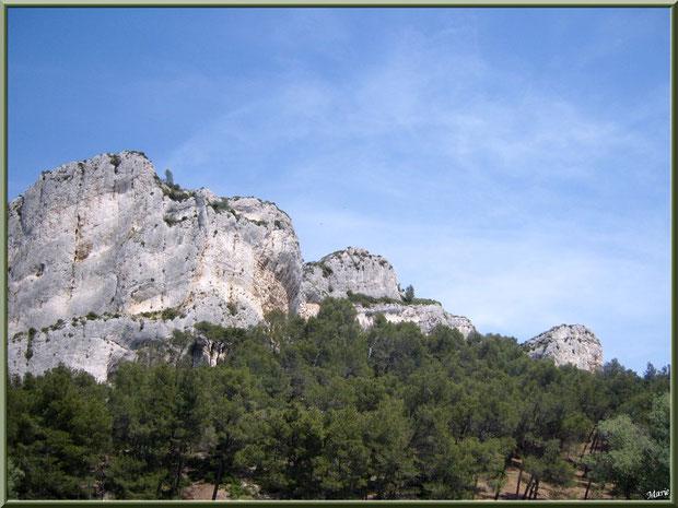 Les Alpilles et la pinède au-dessus du lac de Peiroou et ses reflets à Saint Rémy de Provence, Alpilles (13)