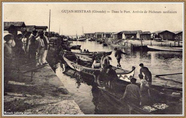 Arrivée des pêcheurs sardiniers au port du Canal à Gujan-Mestras, Bassin d'Arcachon (33)