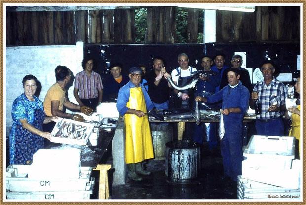 """Gujan-Mestras autrefois : Préparation du poisson pour la soupe de poissons de la Foire aux Huitres pour le restaurant """"L'Huître Joyeuse"""", Bassin d'Arcachon (collection privée)"""