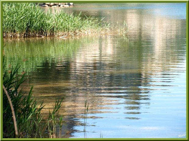 Le lac de Peiroou et ses reflets à Saint Rémy de Provence, Alpilles (13)